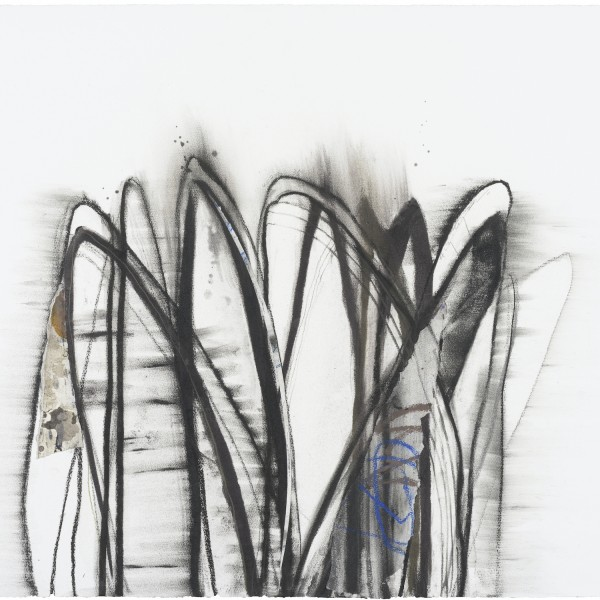 菊地武彦 線の形象 2020-35(drawing)